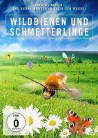 WILDBIENEN UND SCHMETTERLINGE (JAN HAFT)  DVD NEU