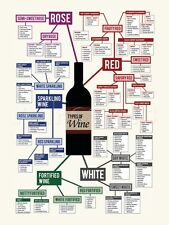 Types of Wine Chart Poster - 24x32