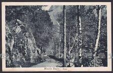 SONDRIO VAL MASINO 06 ARDENNO - MASINO BAGNI Cartolina viaggiata 1931