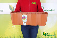 18L Light Brown Large Flower Pot for Railing Balcony Box Terrace Planter 60cm