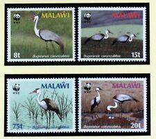 Malawi Birds OISEAUX WWF Wattled Crane 4v SG#759-762 SC#494-497 MI#477X-0X88M841