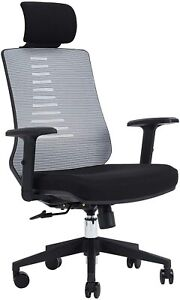 KLASIKA Ergonomic Office Chair with Height Adjustable Back and Lumbar Support