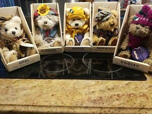 5 Brass Button Bears with Original Boxes