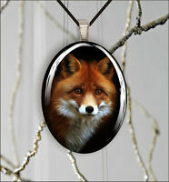 FOX RED HEAD CLOSE UP OVAL CABOCHON GLASS PENDANT -hjr5Z