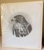 Ruth Ray Hawk Graphite Sketch Art Wildlife Animal Artist Numbered Limited Print