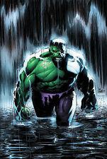 Hulk, Incredible: Tempest Fugit by Peter David (Paperback, 2005) < 9780785115434