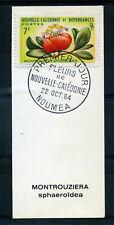 Nouvelle Calédonie, timbre 319  Fleurs oblitéré 1° jour