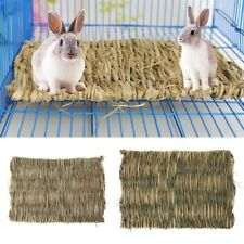 Grass Pet Mat for Reptiles, Rabbits, Ginuea Pigs Crates Liner, Cage Floor Chew