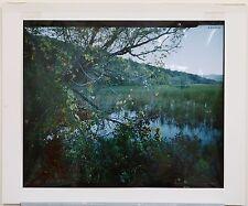 Color Photo, Marshes, Iona Island Nature Reserve, Robert Glenn Ketchum, 1982