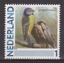NVPH Nederland Netherlands singing birds pimpelmees blue tit paro mesange 2011
