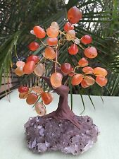 Carnelian Tree Bonsai Tree Amethyst Druze Base Gem Tree Wire Wrapped Feng Shui.
