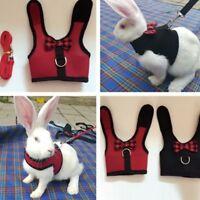 Random Color Animal Hamster Rabbit Harness Leash Set Ferret Pig Small Walk Lead