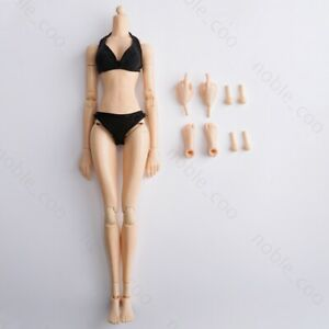 1/6 Female Middle Bust Body Young Girl 12'' Action Figure Fit Hot Toys KUMIK YS