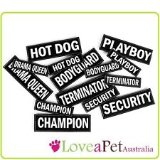 Large Side Patch Labels for EzyDog Convert Harness - Personalise and Accessorise