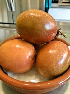 PUERTO RICAN HEIRLOOM PINK PARCHA-PINK PASSION FRUIT-PASSIFLORA EDULIS-10 SEEDS