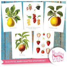 Botanical Fruit A4 Vintage Reproduction Prints - Illustration Art set of 5