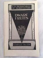 U. S. Department of Agriculture Dwarf Fruits Leaflet 1939 Vintage Pamphlet