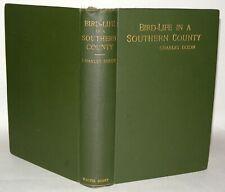 Bird Life In A Southern County - Charles Dixon - Hardback 1899