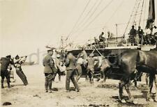 New Zealand Army ANZAC Horses Ship Gallipoli World War 1 6x4 Inch Reprint Photo