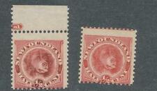 NEWFOUNDLAND DOG-1/2c  Sc #56 &57 ROSE RED &ORANGE RED VF  MINT NH