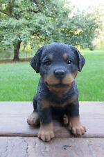 Rottweiler Dog Figurine Statue Resin Ornament New 6.5 inches Puppy rotwailer