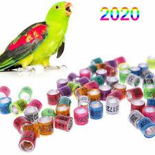 2020 Bird Foot Ring 100Pcs 8mm Pigeon Rings Pigeon Leg Bands ARPU For Racing New