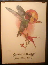 Print  Hummingbird Gustave Alhadeff Signed Texas Congo Artist Limited!
