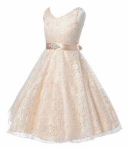 Flower Girl Sleeveless Lace Princess Dress Wedding Birthday Pageant Party Gown,