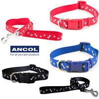 Ancol Paw N Bone Nylon Reflective Adjustable Dog Puppy Collar or Matching Lead