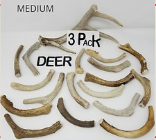 Whole Real Shed DEER ANTLER Dog Bone Chews Treat Toy Small Medium Large XL Lot
