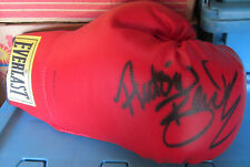 Antonio Banderas Signed Everlast Boxing Glove