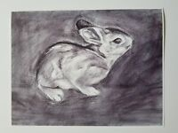 Bunny Fine Art Print Of An Original Graphite Drawing By Krysta Logan 8.5x11