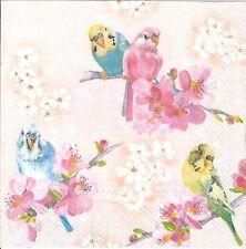 4single paper decoupage napkins. Shabby chic, birds, pastels, parrot design-357