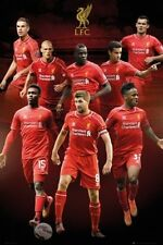 SOCCER POSTER Liverpool Collage 2014-2015