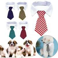 Cute Small Pet Cat Dog Formal Bow Tie Collar Tuxedo Necktie Collar Adjustable
