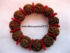 5 Mukhi Rudraksha 5 Face Rudraksh 18-20 mm -Nepal beads Bracelet wrist band Mala