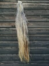 Horse Hair On The Hide