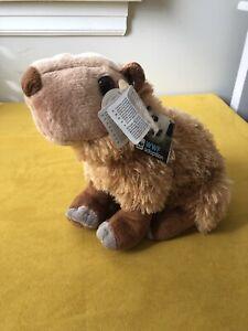 Cuddlekins Capybara South American Rodent 12 inches by Wild Republic SUPER SOFT!