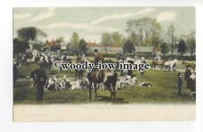 "an1003 - "" Meet of Hounds""  Gathering before the Hunt, at Lyndhurst - Postcard"