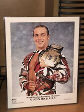 WWF WWE NWA WCW Original Shawn Michaels 8x10 Promo Photo P-359