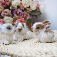 Cute Simulation Animal Doll Rabbit Plush Sleeping Stuffed Toy Kids Gift Decor
