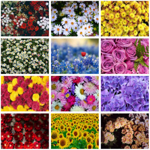 Multitype Colourful Flower Background Cloth Photography Backdrop Prints Decor
