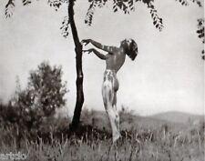 """Héliogravure - 1925 -      """" Junger Wuchs -  Kalman Szollosy """""""