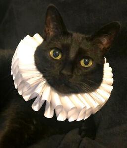 Cat Pet Dog Costume Ruffled Collar Neck Ruff Victorian Steampunk Edwardian Cute