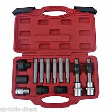 13pc Alternateur Set de Mèches 1.3cm Hex Torx Dents Bosch Poulie Extracteur