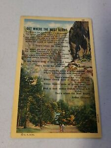 Vintage Postcard  WESTERN  OUT WHERE THE WEST BEGINS  UNPOSTED  #586