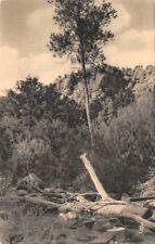 la RIAPRE - i boschi - la Roccia di Oêtre