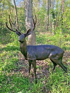 Bronze Stag in cast Aluminium life size Bronze finish Deer Buck stag Garden Stag