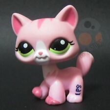 Littlest Pet Shop Collection LPS Figure Toys Walking Cat Tabby #1788 Green Eyes