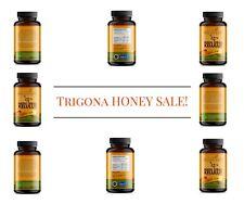 STINGLESS BEE (TRIGONA BEE) HONEY FOR HEALHTY